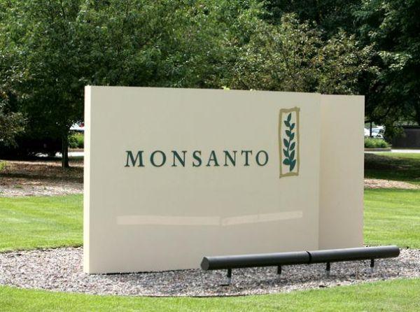 Boa notícia: Monsanto sofre DERROTA em caso de patente no Brasil
