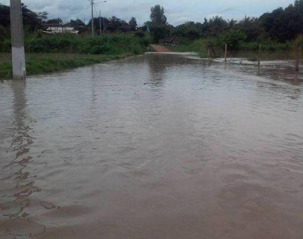 Chuvas e animais peçonhentos causam prejuízo e medo a moradores de MT