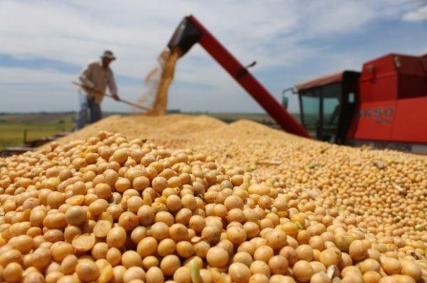 Dupla é presa e polícia recupera 50 toneladas de soja furtada de fazenda em MT