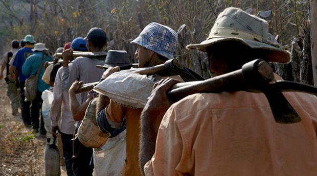 Gerente de fazenda é condenado por manter trabalhadores em regime de escravidão