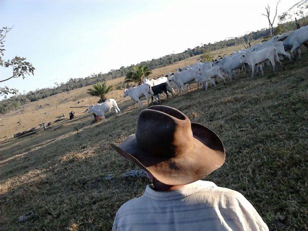 Produtor rural na Fazenda Boi Gordo.