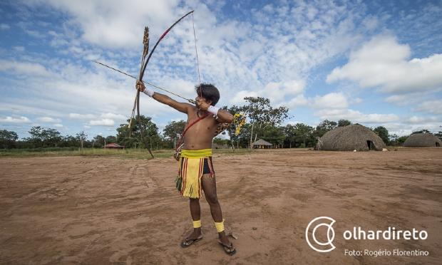 Mato Grosso possui quase 2 milhões de hectares de terras sob disputa judicial