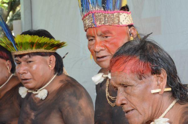 Indígenas criam gado em área protegida; MPF investiga se animais podem causar danos